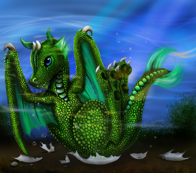 Baby Water Dragon by Nomati