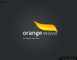 Orange Wave Logo by elmooor