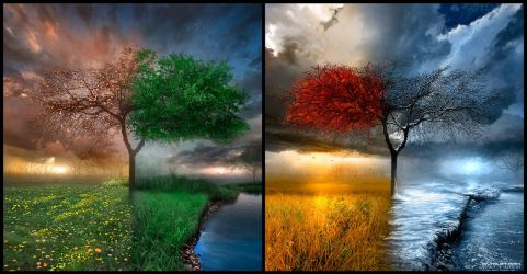 Seasonscape by alexiuss