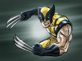 Wolverine by thunderpeel