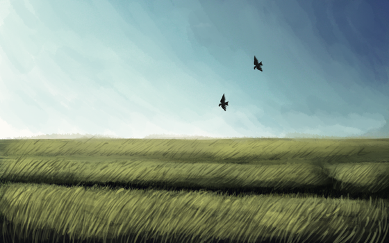 wheat field by Chalybis