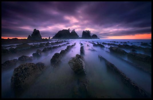 Forever Dreaming by MarcAdamus