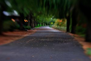 road of life by ISLEOFMANNPHOTOS
