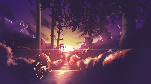 Bike in the Sunset by ensou