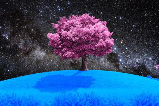 Pink Nature Blue as the Grass. by Supergecko99