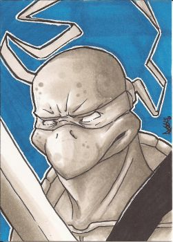 Leonardo Sketch Card by Ross-A