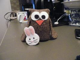 Owl and His Bunny Friend by Ayjah