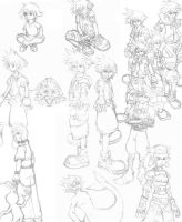 Too Many Soras by Aureawolf