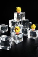 chick adventures_ ice by dragorien