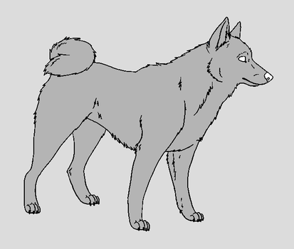 Dog Template - Karelian Bear Dog by NaruFreak123-Bases