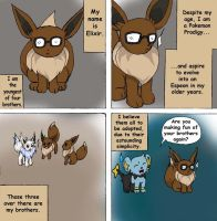 The Eevees 12 Simplicity by RioDiGennaio