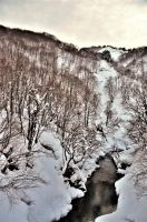 A Creek in Snow Country by Furuhashi335
