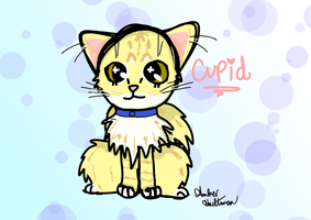 Cupid My Cat by AnimaloverXD