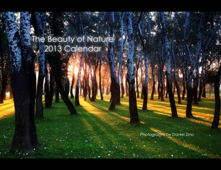 The Beauty of Nature - Calendar by DanielZrno