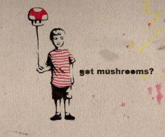Got Mushrooms? by FlyDeco