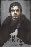 the King in the North by TylerChampion