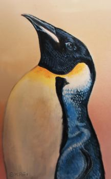 the weekly Zooly challenge: Penguin by Reptangle