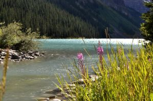 Lake Louise by friendlymessage