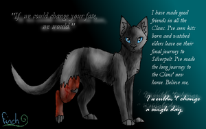 I wouldn't change a single day by Finchwing