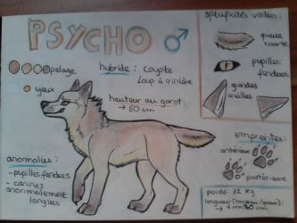 OC : Psycho by BlastOfWinter