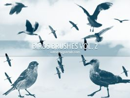 Free Birds Brushes by xara24