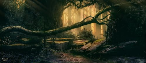 Old Forest A (Patreon IP03) by andreasrocha
