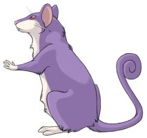 ...pogheys... Rattata by Rainbow-Cemetery