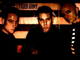 tiger army by leopic
