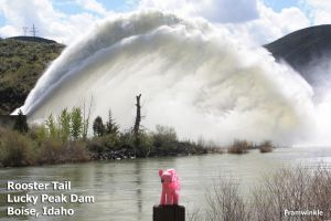 Pinkie Pie at the Lucky Peak Dam Rooster Tail by Framwinkle