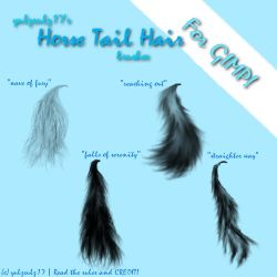 Horse Tail Brushes for GIMP by yulzrulz17
