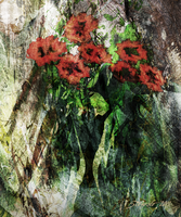 Vase with red flowers by raysheaf