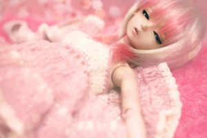 Pretty.in.{Pink} by lovelessger