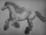 Horse A3 pencil drawing by MusicAndArtItsMyLife