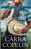 Cowboy Romance Novel by jasonaaronbaca