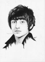 Alex Turner by flying-muffin