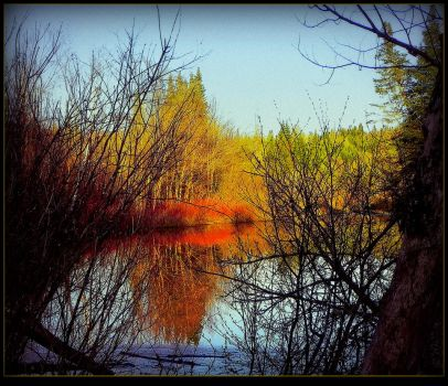Scent of Spring Around the Marsh by surrealistic-gloom