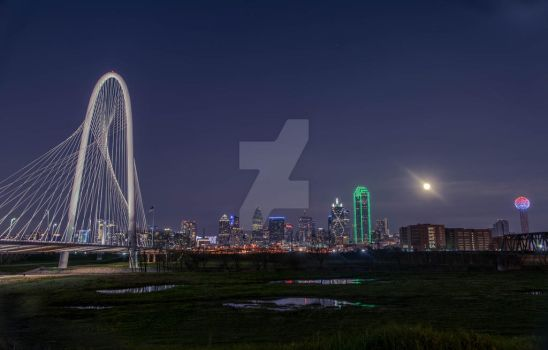 Dallas, A Love Story by ToneyHadnotJr