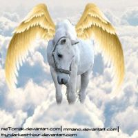 Winged Horse by Carillie