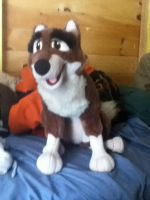 my balto plush came today by EternalHusky