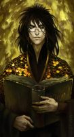 Librarian by Catlait