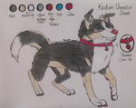 .:Kristen Character Sheet:. by Nephilim-Draugwen