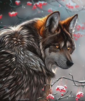 Winter Wolf by Furrirama