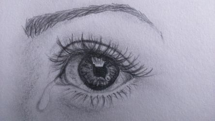 Another eye study by Riahseinn