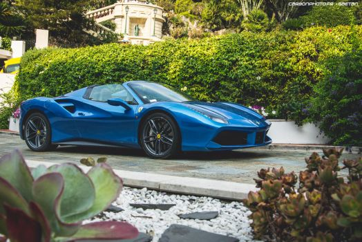 488 spider by Attila-Le-Ain