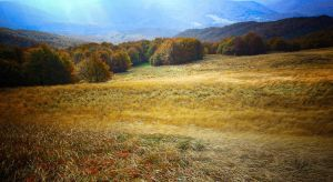 Autumn in Bieszczady 7 by CitizenFresh