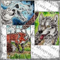 Triple ACEO - Redwall151 by Cally-Dream