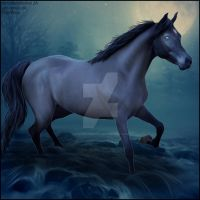 HEE Horse Artwork - One With The River by WildWillowHEE
