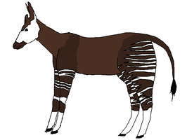 Okapi by Hairk