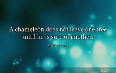 Chameleon Does Not Leave Tree - Arabian Proverb by enquotes