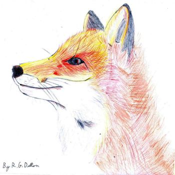 Fox 2 by RickyDutton